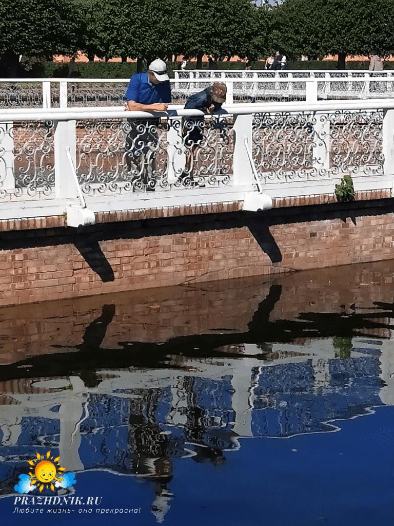 Sankt-Peterburg-Petergof-7